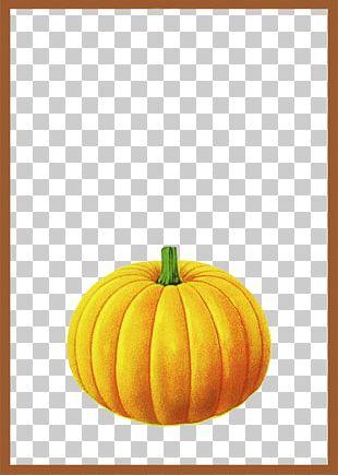 Pumpkin Calabaza Brown PNG