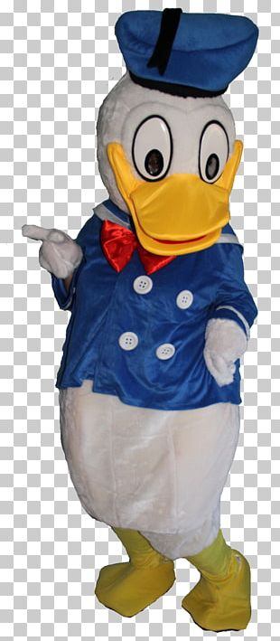 Flightless Bird Water Bird Beak Costume PNG
