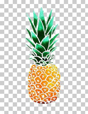 Pineapple Drawing Watercolor Painting PNG