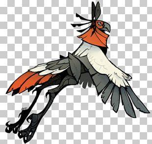 Bird Beak Drawing PNG