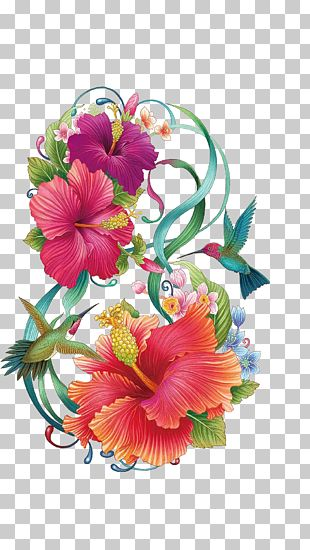 Common Hibiscus Flower Color Painting PNG