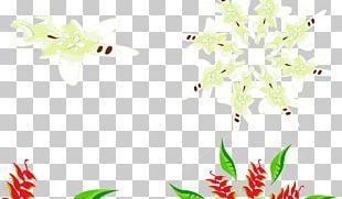 Illustration Insect Petal Leaf Floral Design PNG
