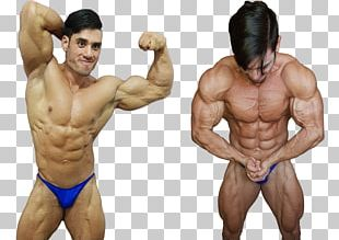 Muscle Tissue Bodybuilding Human Body Nutrient PNG