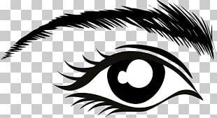 Eyebrow Eye Color PNG