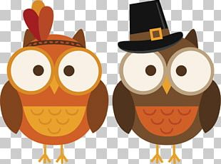 Owl Thanksgiving Cuisine Of The United States Turkey PNG