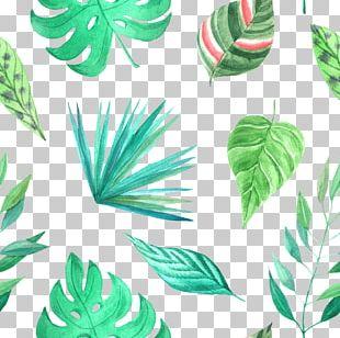 Watercolor Painting Leaf Art PNG