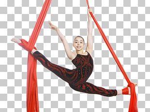Acrobatics Acrobatic Gymnastics Aerial Silk Rope PNG