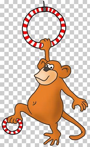 Drawing Cartoon Monkey PNG
