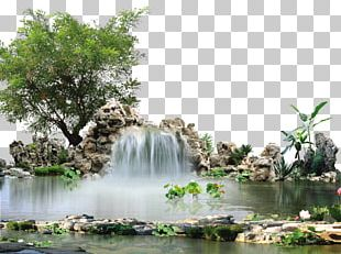 Landscape MPEG-4 Part 14 PNG