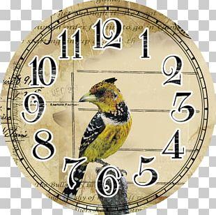 Quartz Clock Clock Face PNG