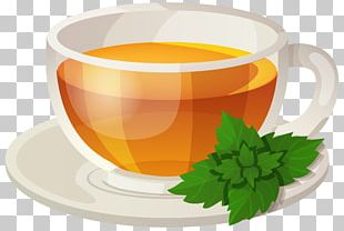 Green Tea Sencha Drink Rooibos PNG