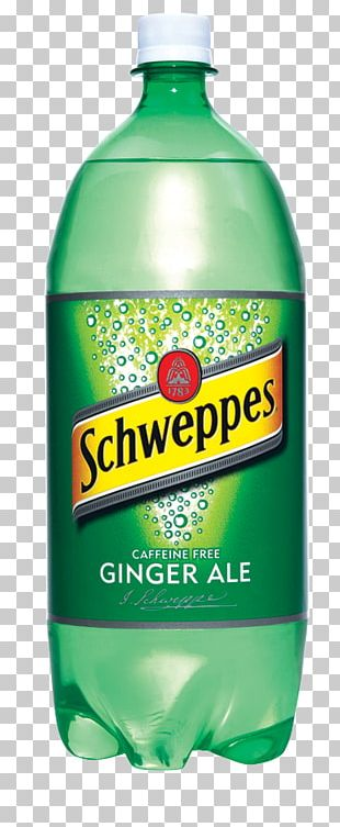 Fizzy Drinks Ginger Ale Ginger Beer Mineral Water PNG