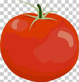 Plum Tomato Bell Pepper Open PNG