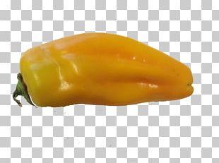 Habanero Serrano Pepper Yellow Pepper Bell Pepper Paprika PNG