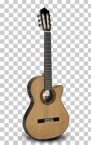 Ukulele Twelve-string Guitar Acoustic Guitar String Instruments PNG