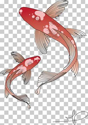 Koi Goldfish Carp PNG