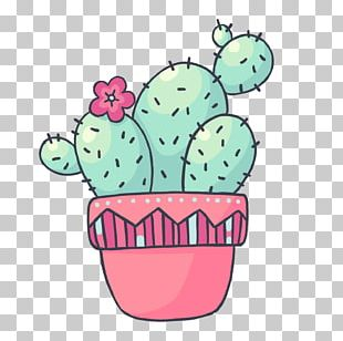 Flowerpot Pink M Flowering Plant PNG