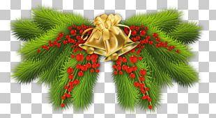 Pine Branch Christmas Tree Christmas Decoration PNG