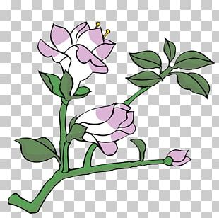 Floral Design Painting Drawing Flower PNG