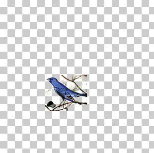 Bird Feather National Audubon Society Indigo Bunting Beak PNG