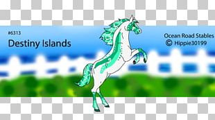 Horse Name Stallion Mare PNG
