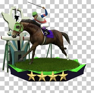 American Paint Horse English Riding Budyonny Horse Stallion Ridgewood Pearl PNG