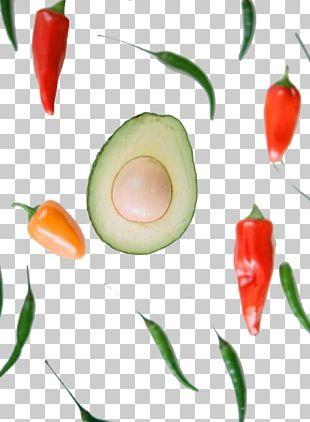 Avocado Bell Pepper Fruit PNG