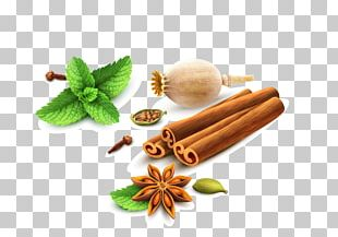 Spice Mint Cartoon PNG