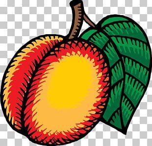 Nectarine PNG