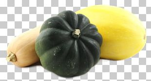 Cucurbita Winter Squash Gourd Vegetable PNG