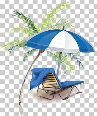 Summer Vacation Summer Vacation PNG