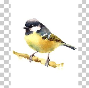 Bird Watercolor Painting Drawing Art Museum PNG