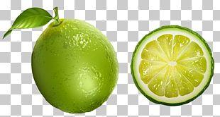 Lemon-lime Drink Juice Tangerine Grapefruit PNG