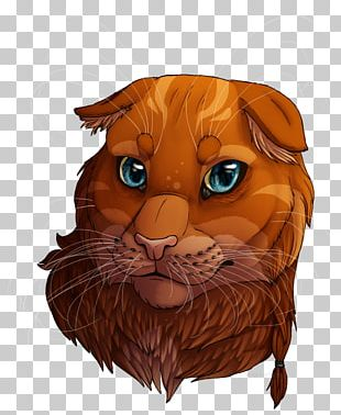 Whiskers Tiger Cat Art Lion PNG