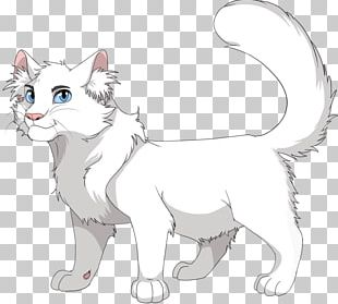 Cats Of The Clans Warriors Cloudtail Book PNG