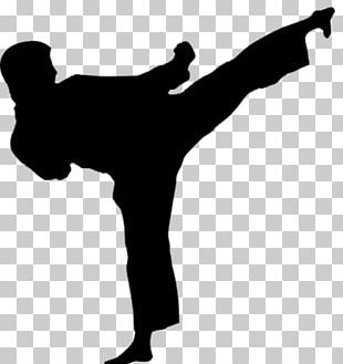Karate Martial Arts Kick Taekwondo Obi PNG