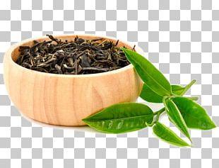 Hōjicha Green Tea Nilgiri Tea White Tea PNG