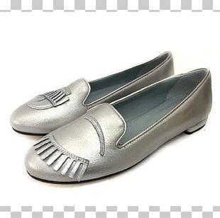 Ballet Flat Ballet Shoe Blog PNG