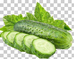 Cucumber Vegetable Muskmelon Fruit PNG