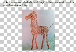Giraffe Neck Crayon Fauna Art PNG