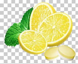 Lemon Drop Limonana Mint PNG