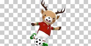 Football At The 2018 Asian Games Gelora Bung Karno Stadium 2018 Asian Para Games 2018 World Cup PNG