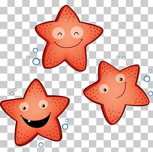 Starfish Child Marine Invertebrates Sea PNG