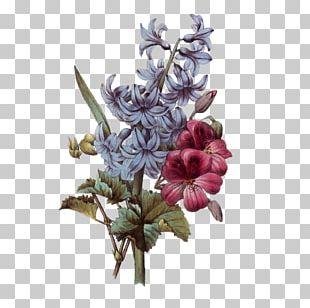 Flower Bouquet Floral Design Botanical Illustration PNG