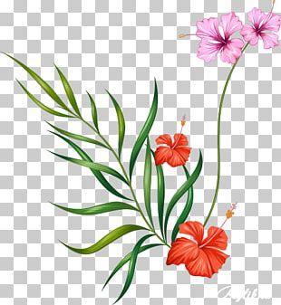 Floral Design Watercolor Painting Watercolour Flowers Flower Painting In Watercolor PNG