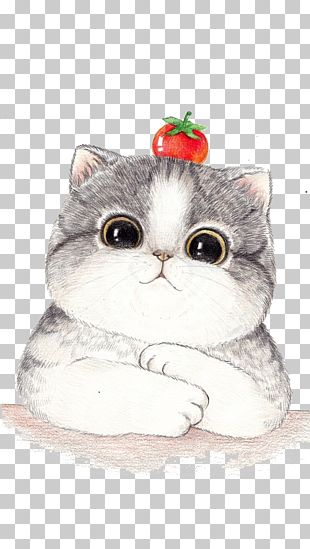 Cat Cartoon Drawing Illustration PNG