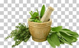 Herb Fed Poultry Eating Food Indian Cuisine PNG