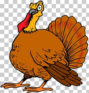 Thanksgiving Day Turkey Wish Happiness PNG