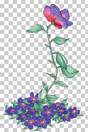 Floral Design Cut Flowers Violet Rose Family PNG