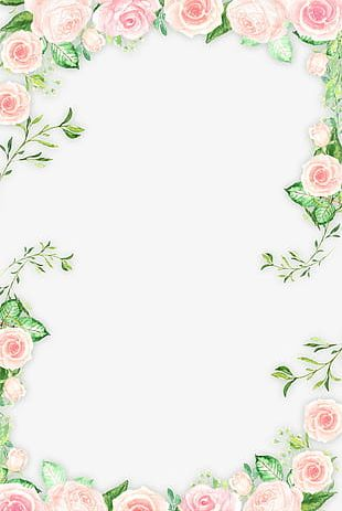 Romantic Pink Flower Border PNG